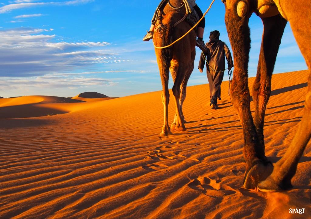 Visages et rencontres du sud Marocain